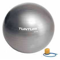 Tunturi Ballon de Gym 65 cm - Silver