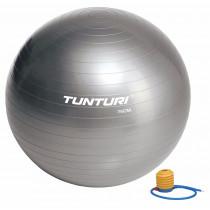 Tunturi Ballon de Gym 75 cm - Silver