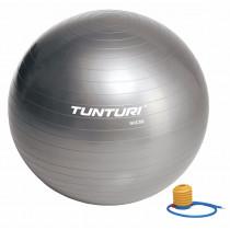 Tunturi Ballon de Gym 90 cm - Silver