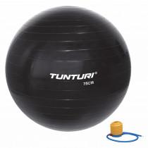 Tunturi Ballon de Gym 75 cm - Noir