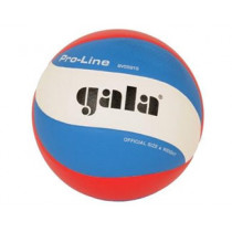 Gala Pro- Line Volleyball 5591S10 fossette